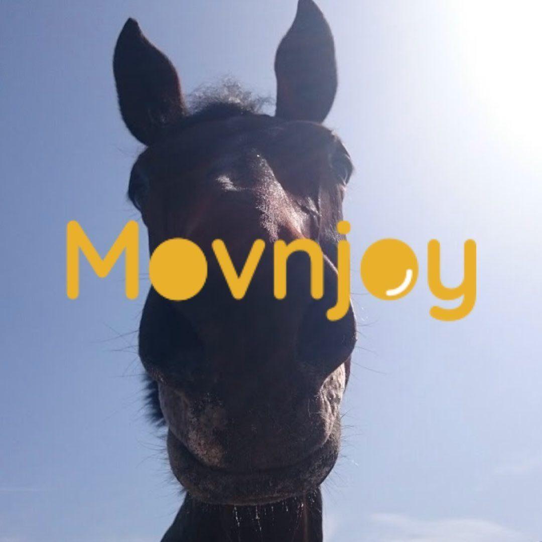 Movnjoy.com